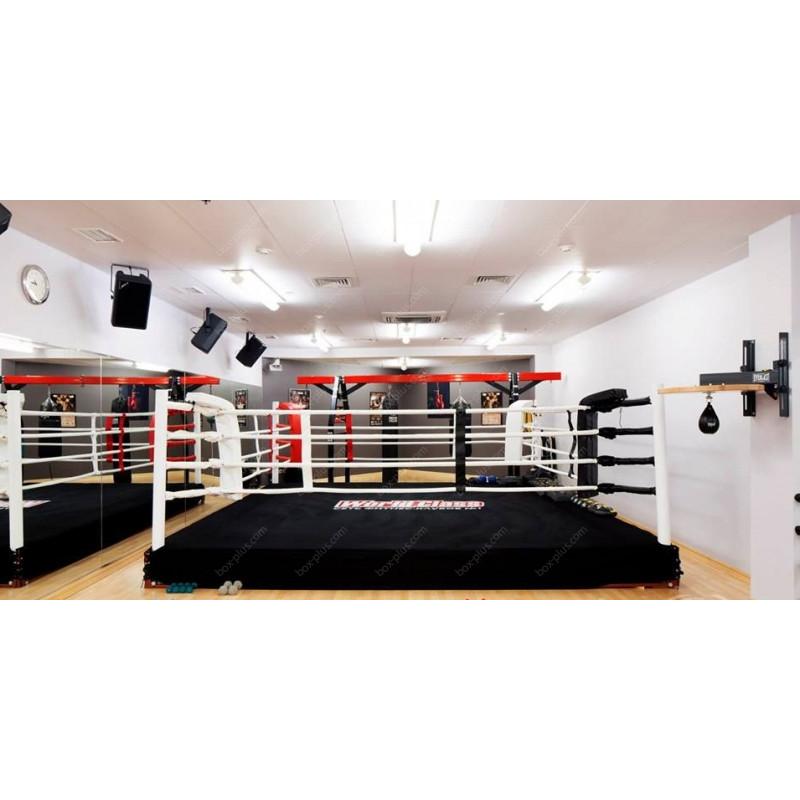 Боксерский ринг на подиуме